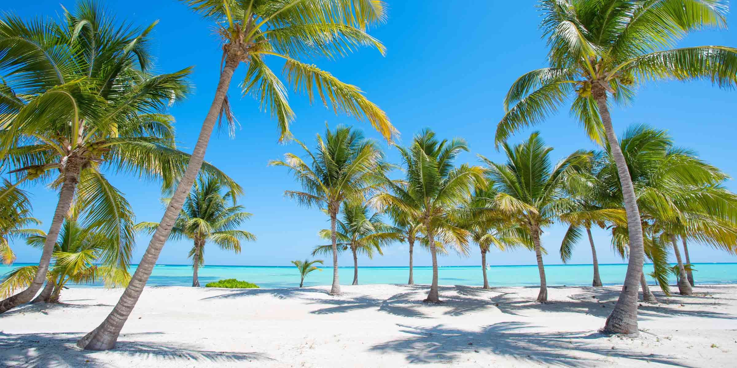 The Dominican Republic. Punta Cana or Boca Chica