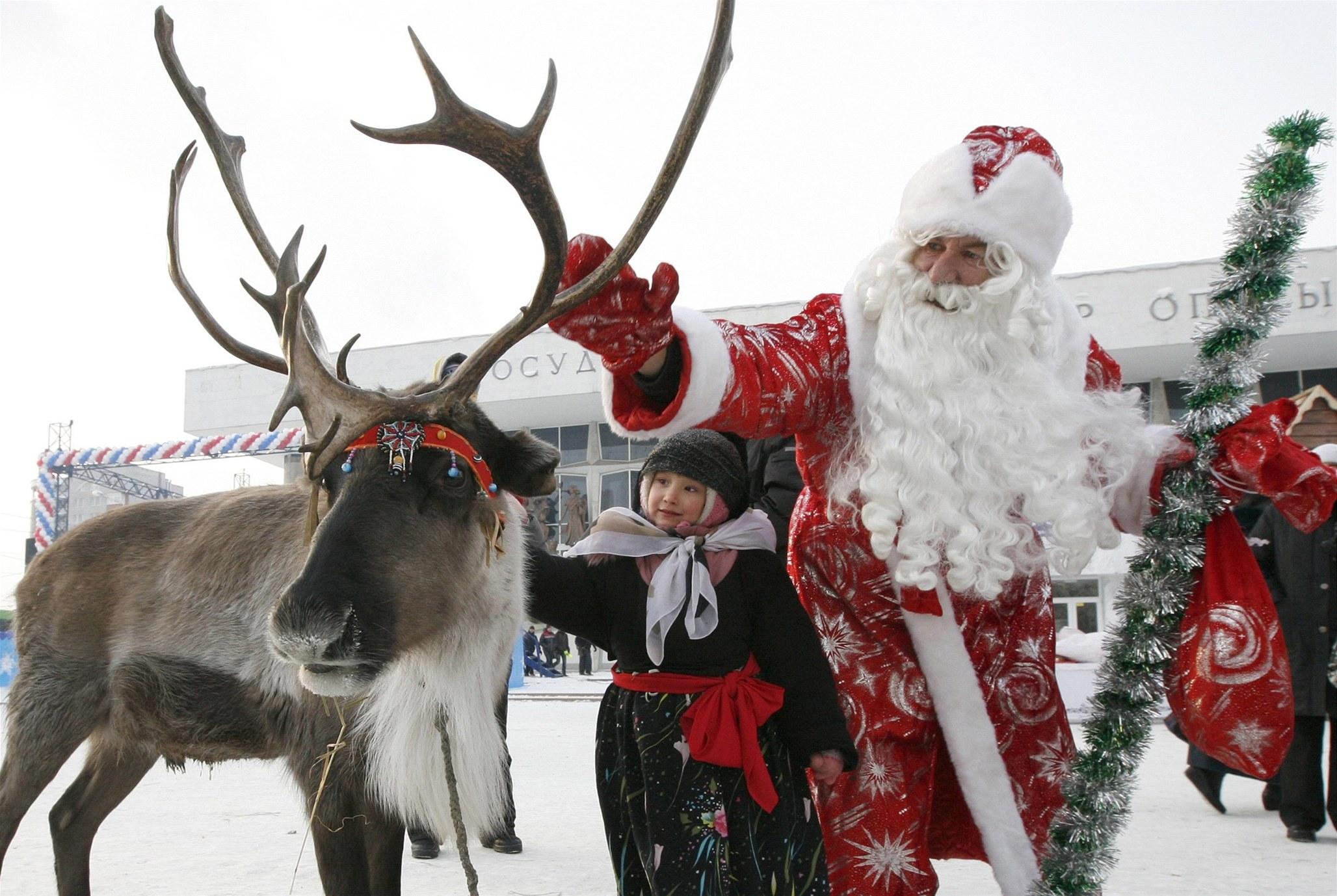 Christmas Reindeer Display